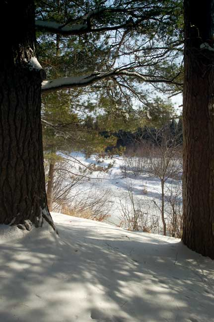 Deerskin-River-through-the-trees-e