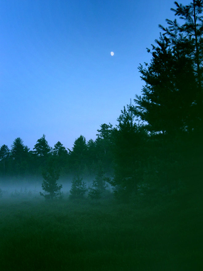 Moon-over-evening-bog-e